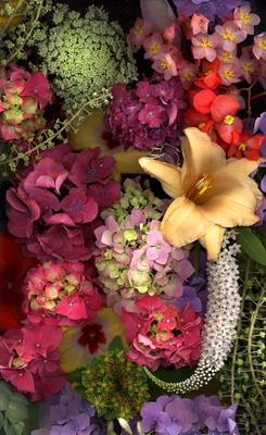 Flower Circus