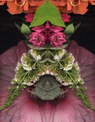 Flower Bandit