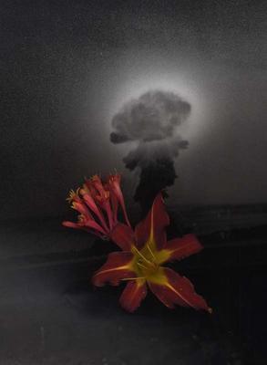 Flowering Los Alamos
